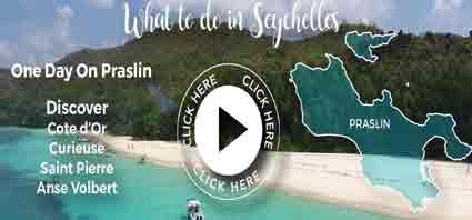 1 Day Praslin - Trip 4